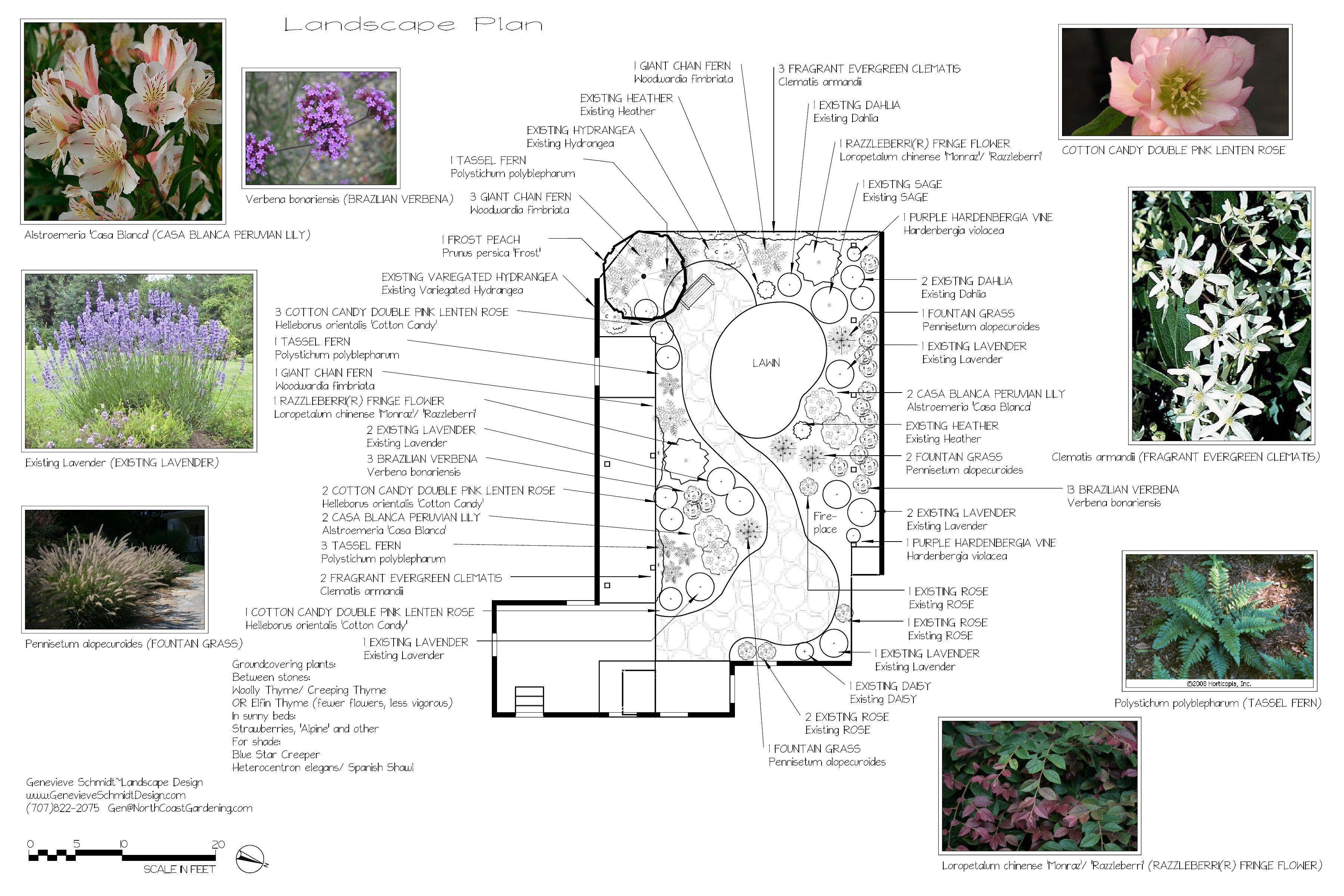 landscaping area landscape design plans examples